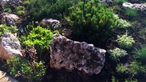 Устройство альпинария и рокария, альпийская горка