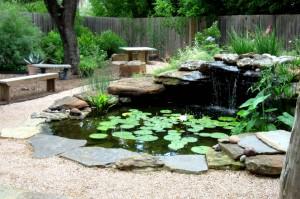 Annieinaustin, G2, contemplative pond