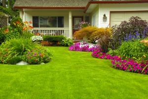 Elegant-landscaping-design-F2F1