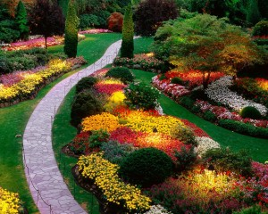 cheap-fall-landscaping-ideas